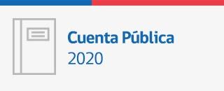 01 Cuenta pública 2020